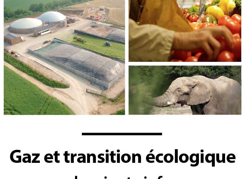 Gaz et transition écologique la minute info.