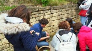 Goûte-campagne découverte des plantes sauvages comestibles (c)Pont du Gard