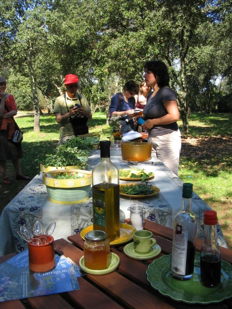 Goûte-campagne : découverte des plantes sauvages comestibles