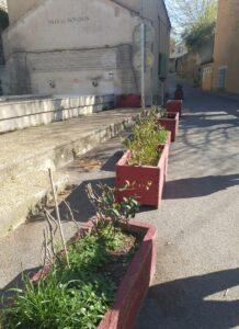 Montfrin : Opération Jardinières Partagées